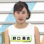 野口葵衣アナ(NHK)の身長と年齢とカップ画像!彼氏はtehuで高校と大学は?